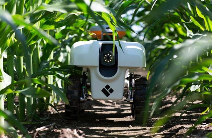 Robotic Plant Buggy