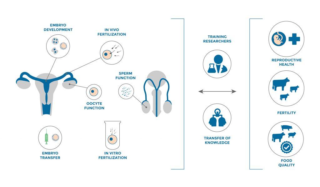 เทคโนโลยี Reproductive biotechnology
