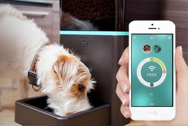 เทคโนโลยี Petnet Smartfeeder